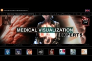Medical Visualisation Experts